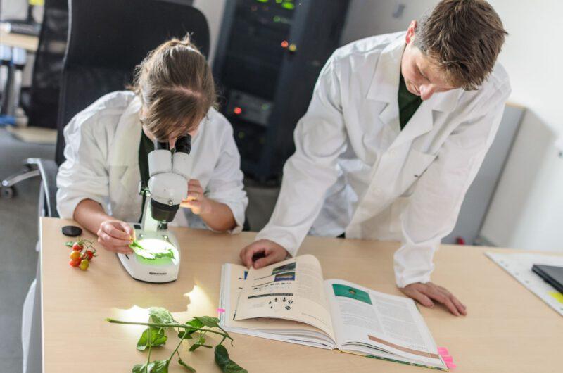 R&D oddělení rostlinolékařů NWT Agro