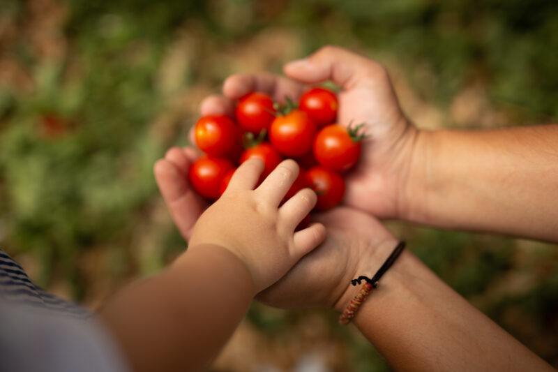 image-bez-pesticidu